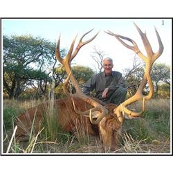 5 Day Argentina Red stag 2019or 2020