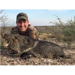 2 day Texas Javelina hunt for 2 Hunters