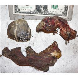 VIRUS LOT OF SCREEN USED GOLIATH SKULLS & GORE