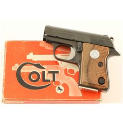 Colt Junior .25 ACP SN: 41900CC