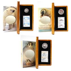 2004-2006 Canada Limited Edition Coin and Stamp Sets. You will receive the 2004 $2 Proud Polar Bear,