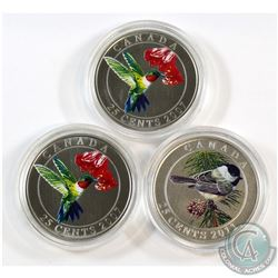 Lot of 3x Canada 25-cent Birds Series Coins in Capsules Only. You will receive 2x 2007 Ruby-Throated