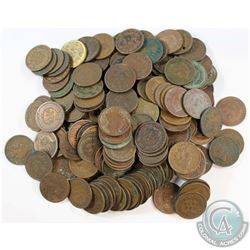 Estate Lot United States Indian Head Penny Collection. 180pcs.