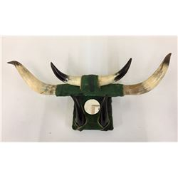 Vintage Horn Wall Hanging