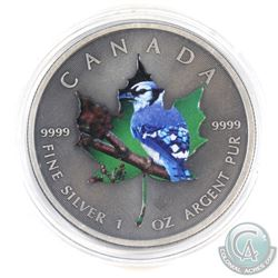 2015 Canada $5 Coloured 'Blue Jay' Antique Finish 1oz Fine Silver Maple (Tax Exempt)