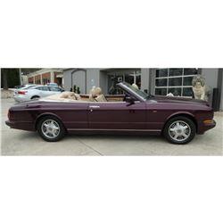 Fabulous Bentley Convertible, Minty, Rare Custom Wine Paint, Loaded, 1997 Azure