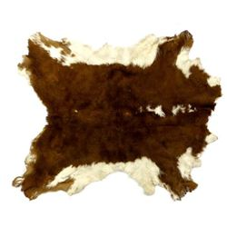 Small Hereford Steer Hide