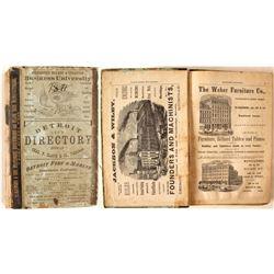 Detroit City Directory, 1871-2  (82910)