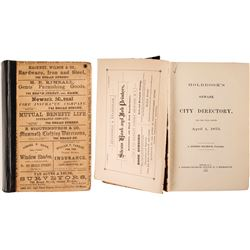 Holbrook's New York City Directory, 1875  (82855)