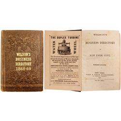 Wilson's Business Directory of New York City, 1868-69  (82876)