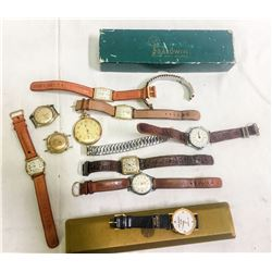 Watch Collection  (87153)