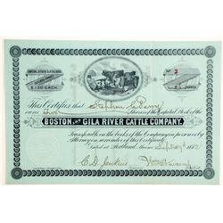 Boston and Gila River Cattle Company Stock  (88010)