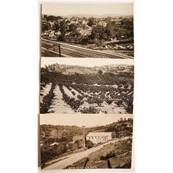 Real Photo Postcards  (88264)