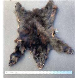 Black Bear Pelt  (86466)