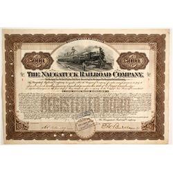 The Naugatuck Railroad Co   (87010)
