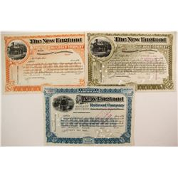 The New England Railroad Co stock (3)  (87024)