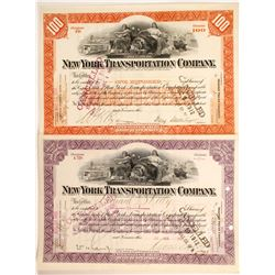 New York Transportation  Co stock (2)  (88904)