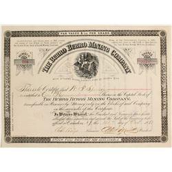 The Burro Burro Mining Company Stock Certificate  (62941)