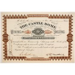 Castle Dome Mining and Smelting Company Stock - Brown Version  (86778)