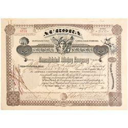 Aurora Consolidated Mining Company Stock  (99597)