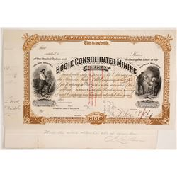 Bodie Consolidated Mining Company Stock  (86137)