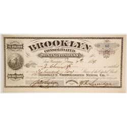 Brooklyn Consolidated Mining Company Stock  (86143)