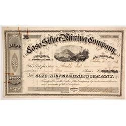 Coso Silver Mining Company Stock  (86711)
