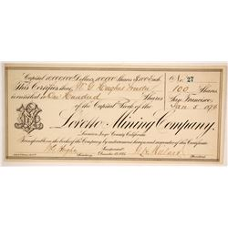 Loretto Mining Company Stock Certificate - a G. T. Brown Lithograph  (86708)