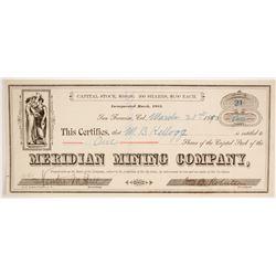 Meridian Mining Company  (86713)