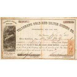 Telegraph Gold & Silver Mining Company Stock  (80308)