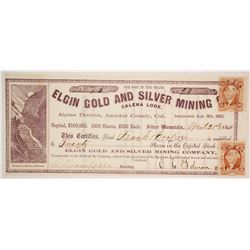 Elgin Gold and Silver Mining Company stock  (80311)