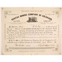 Veritas Mining Company of Colorado Stock - NUMBER 1  (87934)
