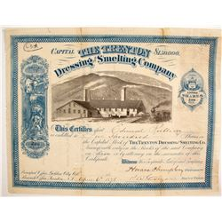 Trenton Dressing and Smelting Company Stock  (87950)