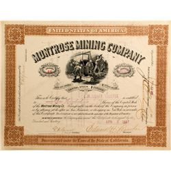 Montrose Mining Co. Stock Certificate, Ouray, Colorado 1887  (51257)