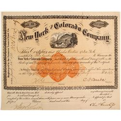 New York and Colorado Company Stock  (88006)