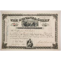 Bonanza Chief Gold Mining Company Stock  (87958)