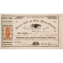 Princess Gold and Silver Mining Company Stock  (86103)