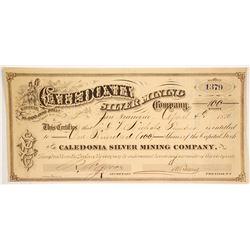 Caledonia Silver Mining Co  (86518)