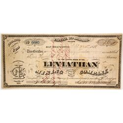 Leviathan Mining Co  (86535)