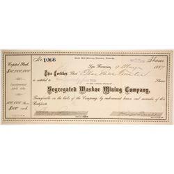 Segregated Washoe Mining Company  (86503)