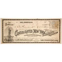 Consolidated New York Mining Co.  (86516)