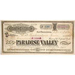 Paradise Valley Mining Company  (86530)