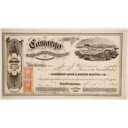 Camargo Gold & Silver Mining Company Stock  (88124)