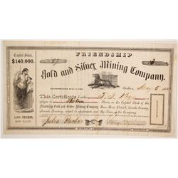 Friendship Gold and Silver Mining Company Stock  (86073)