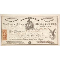 Carolita Gold and Silver Mining Company Stock  (86119)