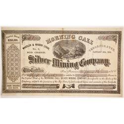 Morning Call Silver Mining Company Stock  (86118)