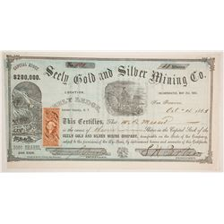 Seely Gold & Silver Mining Company Stock  (86120)