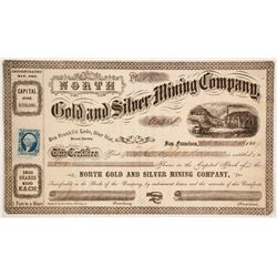 North Gold and Silver Mining Company  (86133)