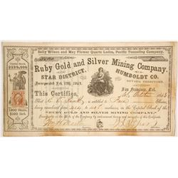 Ruby Gold and Silver Mining Company Stock  (86132)