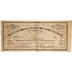 Woodville Consolidated Silver Mining Co  (86547)